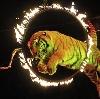 Цирки в Семикаракорске