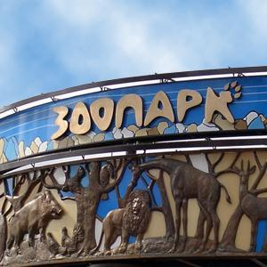Зоопарки Семикаракорска